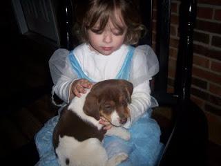 Halloween-puppies-0121