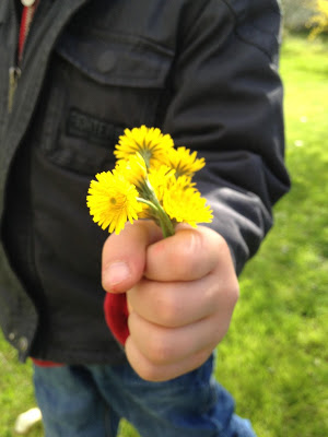 child-and-dandelions1