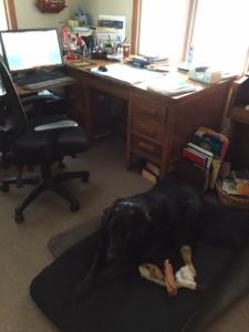 Desk and Oscar